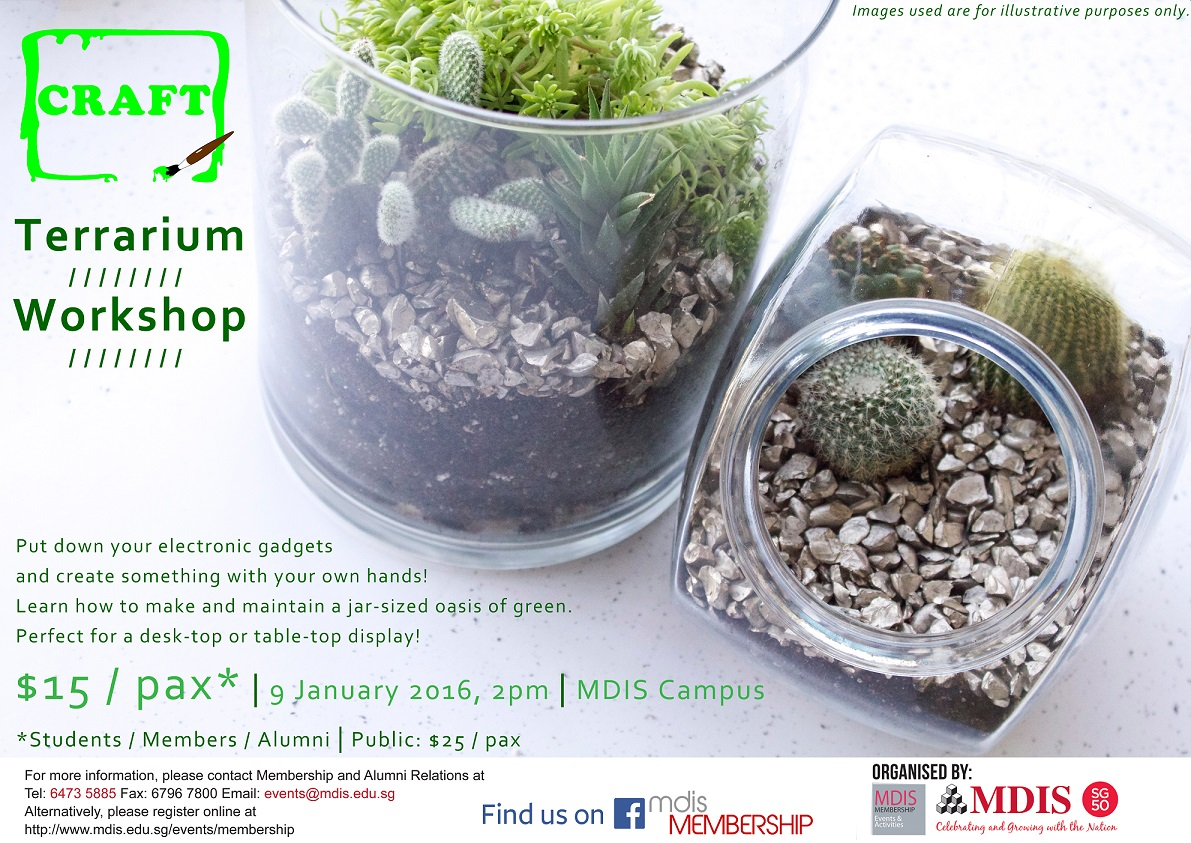 Craft Terrarium Workshop Registration Singapore Eventnook