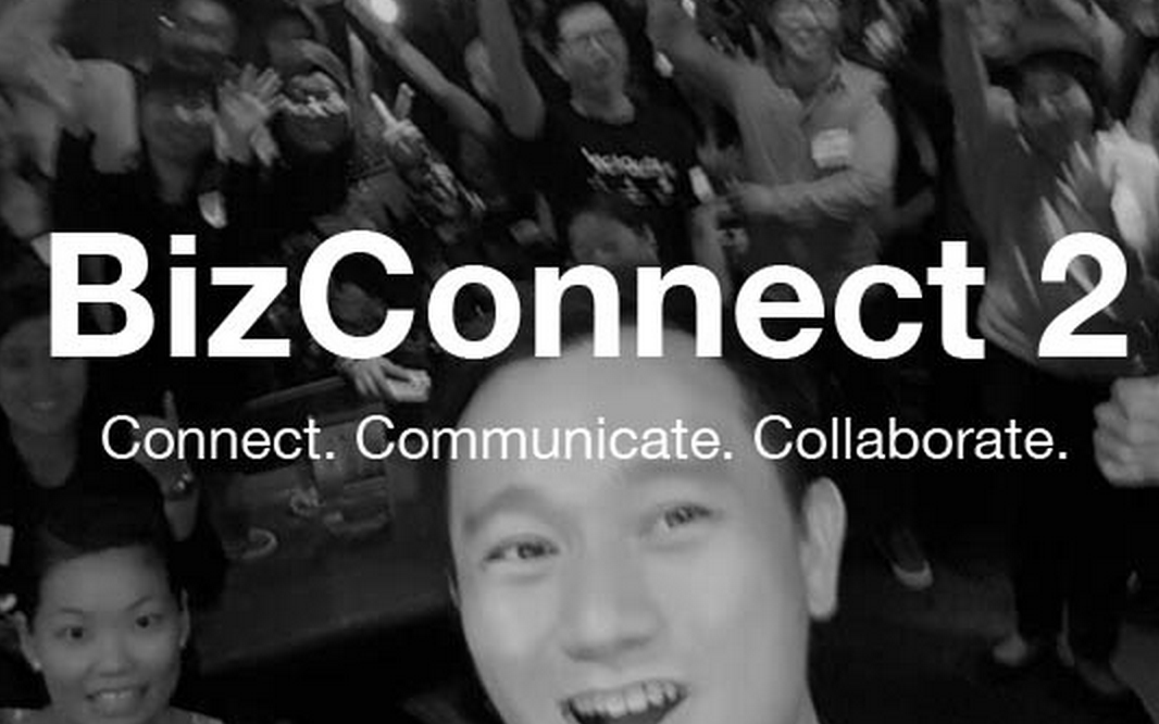 BizConnect Networking Night 2