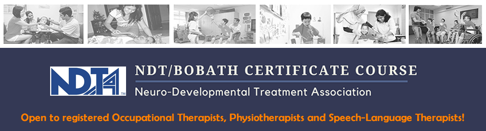 NDT/Bobath Certificate Course Banner Image