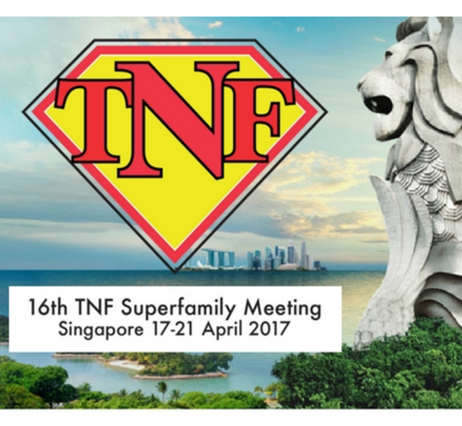 16th TNF Superfamily Meeting