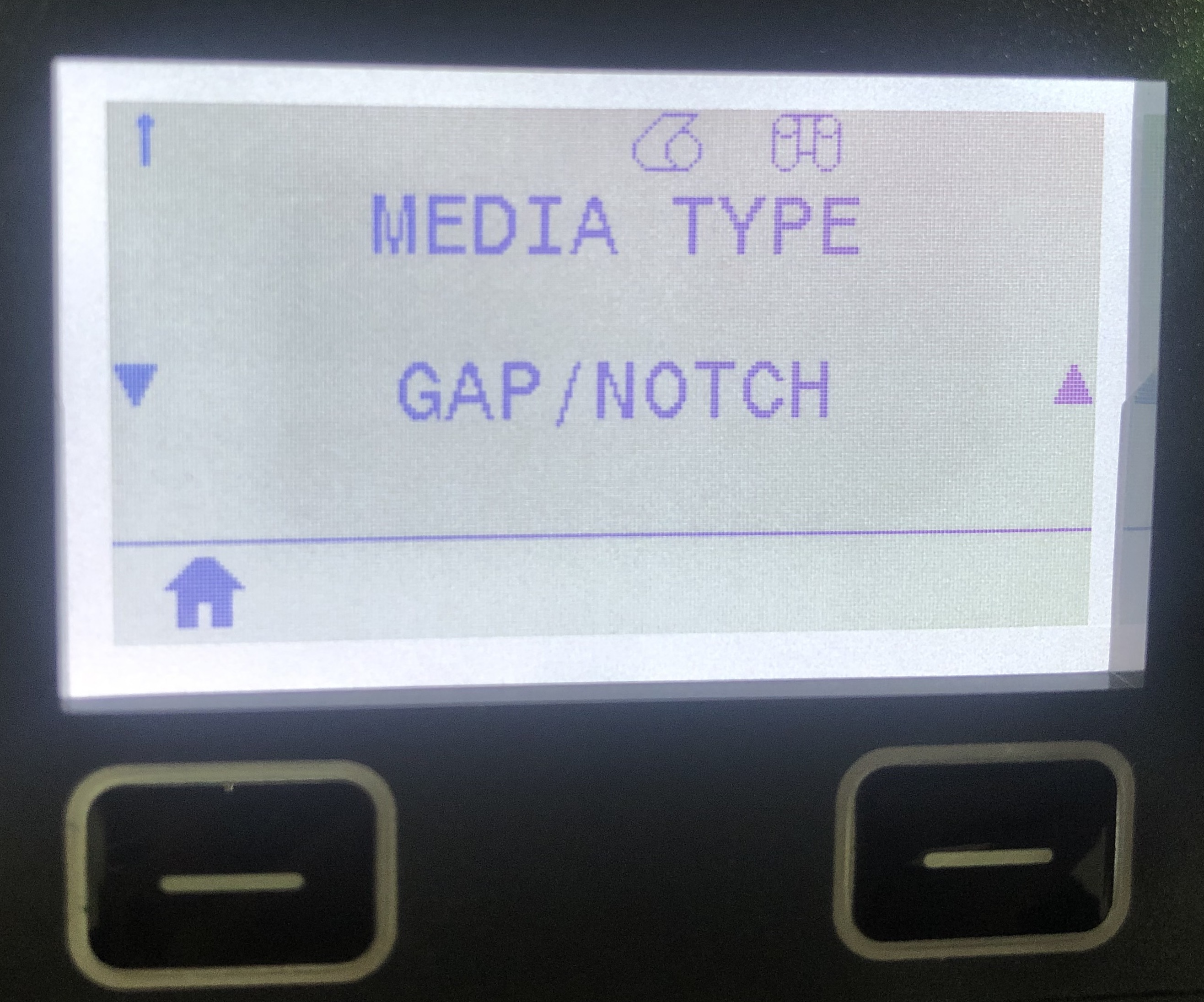 GAP/NOTCH